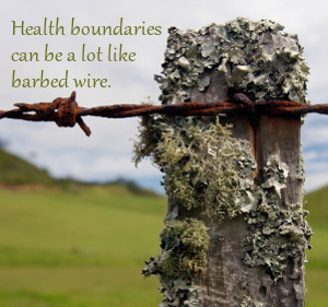 fence post with lichen and rusted barbed wire
