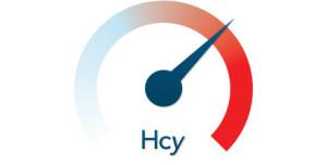 Homocysteine Graphic