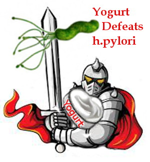 Yogurt defeats h.pylori. Yogurt's good bacteria are your knights in shining armor