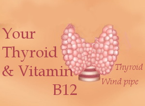 Your thyroid and vitamin B12