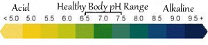 Healthy body pH range