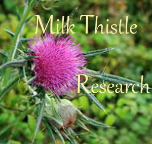 Photo of Milk Thistle flower and bud - Text: Milk Thistle Research