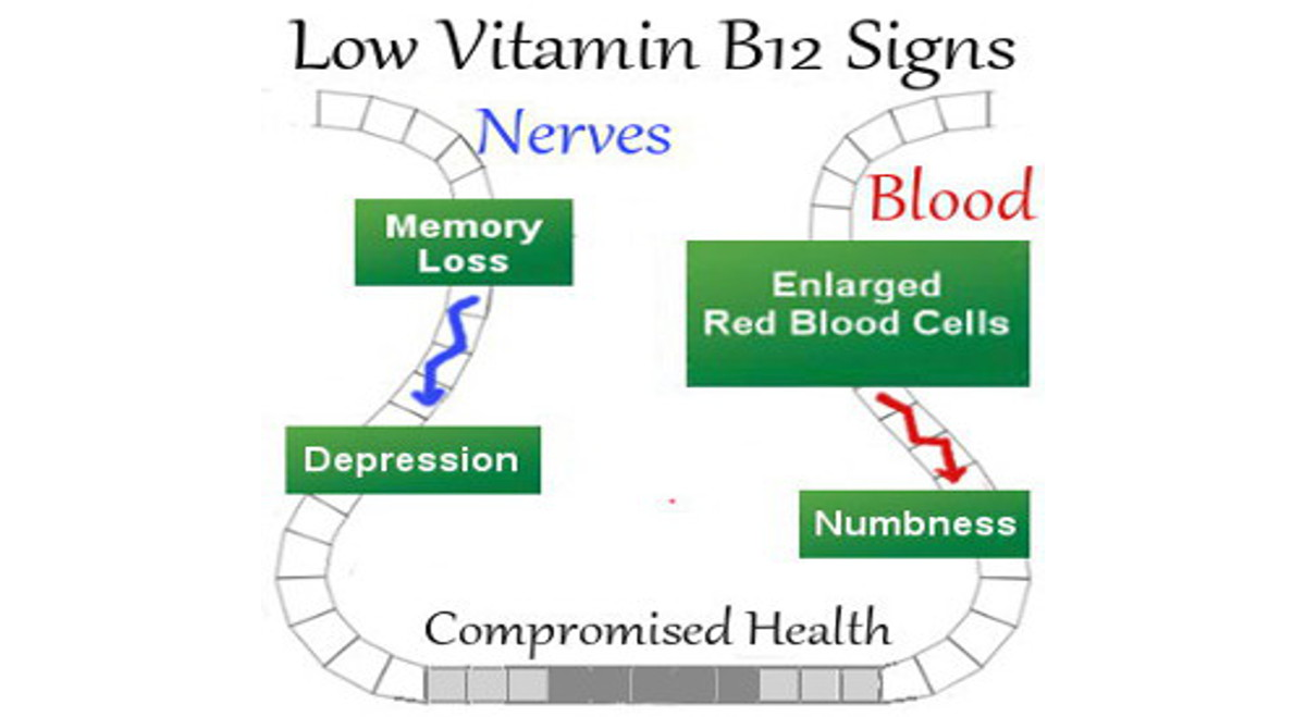 Low Vitamin B12 Signs Leading to Bad Health